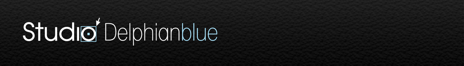 Studio Delphianblue, LLC Logo
